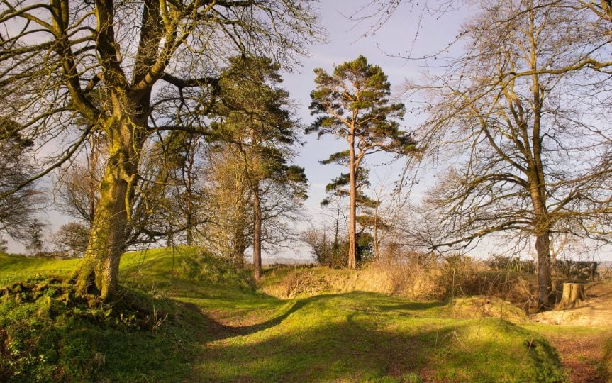 Tullaghoge Fort, Cookstown Gallery Image
